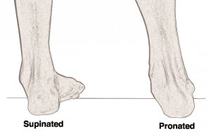left foot supination right foot pronation