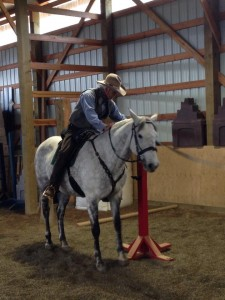 Dr. Hans Asmussen riding Jewels in Working Equitation Clinic May 2014